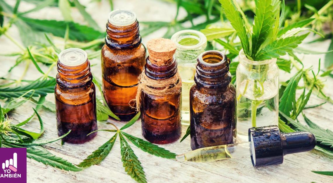 Fotografía de 6 envases de vidrio con cannabis medicinal todos están rodeados por hojas de la misma planta