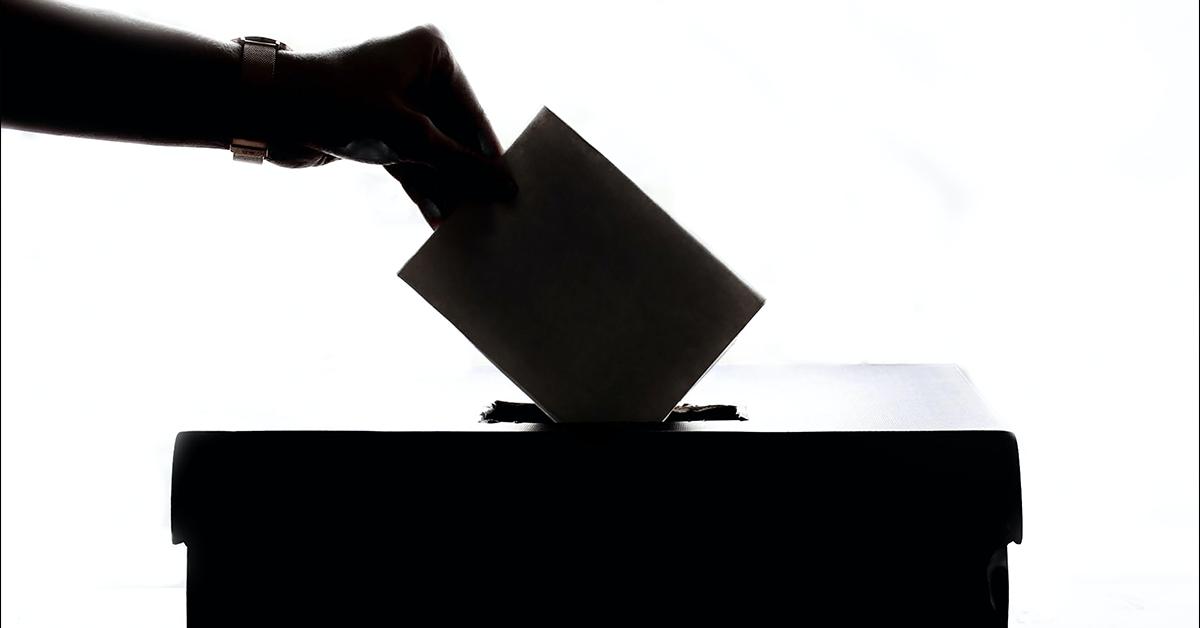 Pcd estarán en las boletas electorales de junio: el INE impulsa su participación