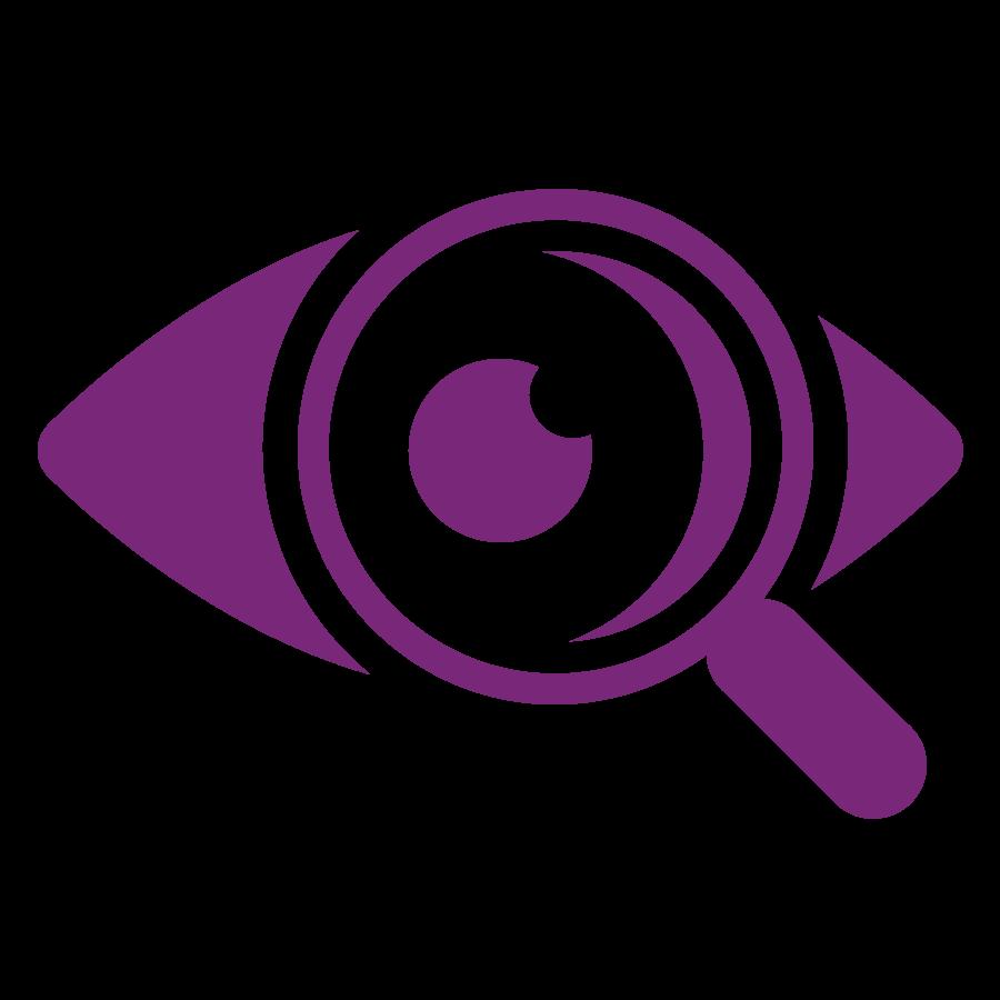 Representación gráfica de un ojo con una lupa enfrente que pretende comunicar visualmente un dato importante al que hay que prestar especial atención.