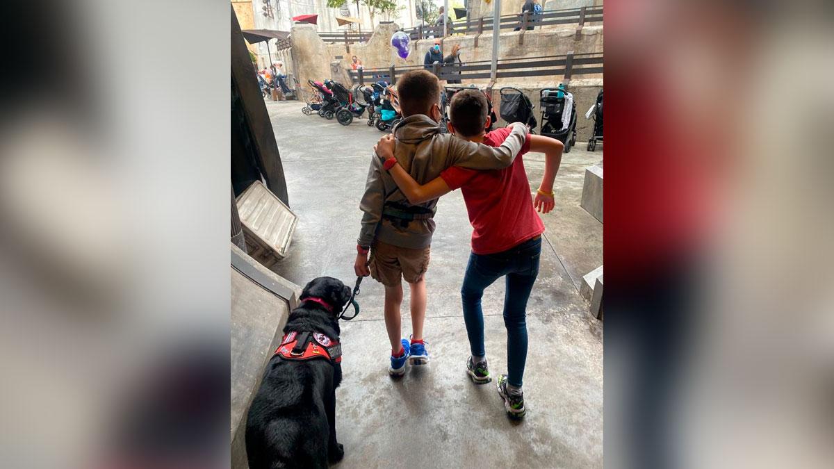"""""""En México no hay visibilidad ni conocimiento sobre los perros de asistencia y casi la mayoría de las veces nos niegan el acceso"""""""