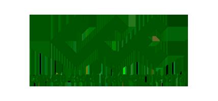 Logotipo Consejo Coordinador Empresarial en texto verde