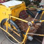 En la imagen aparece un triciclo de carga compuesto de metal que comúnmente sirve para transportar garrafones de agua u objetos pesados en América Latina; sin embargo, en la imagen se muestra un triciclo de carga oxidado de color amarillo adaptado para ser silla de ruedas de un usuario con discapacidad motriz, tiene un cojín de color rojo y un pedazo de madera en en la parte interior, al frente tiene un par de manijas que sirven como palanca para mover las ruedas.